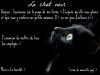 Ferme : Le chat noir