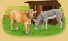 Ferme : Les animaux enchantés