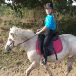 Cheval Ulka - Femelle (10 ans)